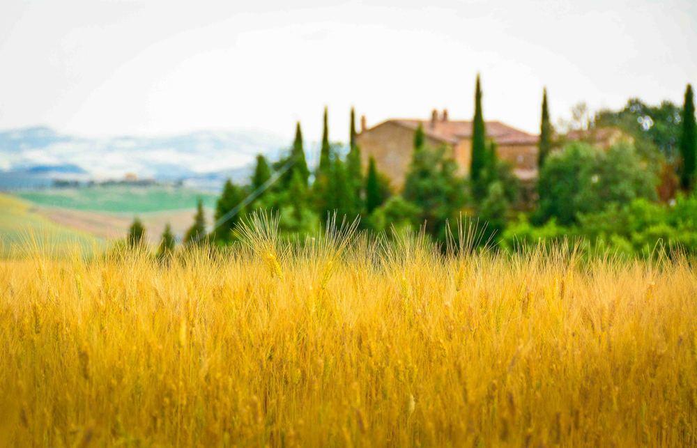 tuscany-1-2.jpg
