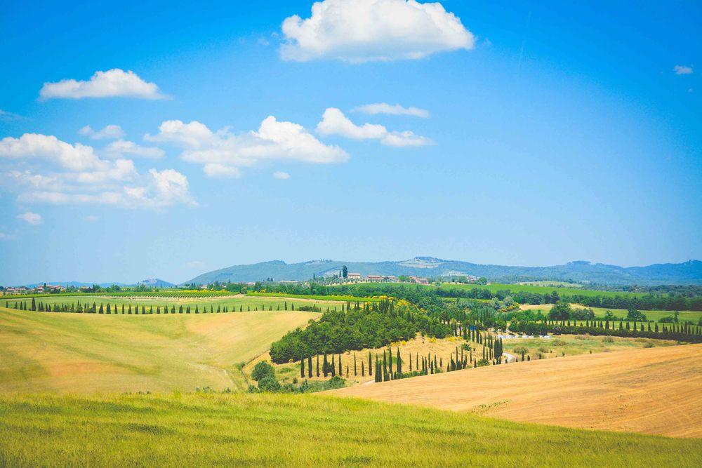 Tuscany 2-66.jpg