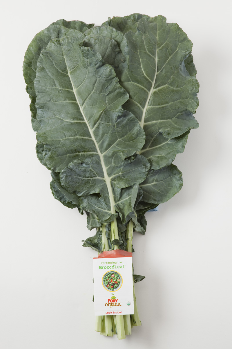 BroccoLeaf | Bite Into Broccoli for a Healthy Lifestyle: 5 Ways to Celebrate National Nutrition Month & We Love Broccoli Day | YES! Nutrition, LLC | Tori Holthaus, MS, RDN, LD