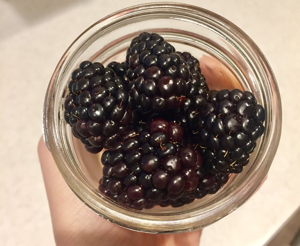 Blackberries | YES! Nutrition LLC