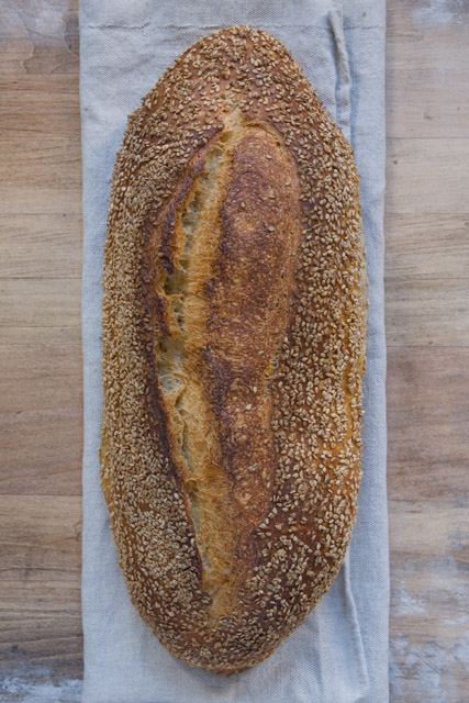 SEMI DI SESAMO Oval loaf with a chestnut-colored crust, abundantly coated with raw, unhulled sesame seeds; open, irregular crumb structure. Slightly sour, caramel aftertaste.