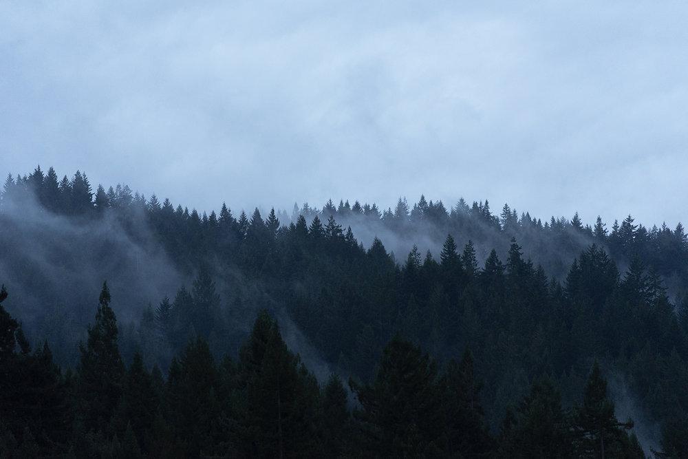 cloudhands_0008.jpg