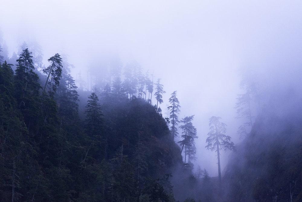 cloudhands_0021.jpg