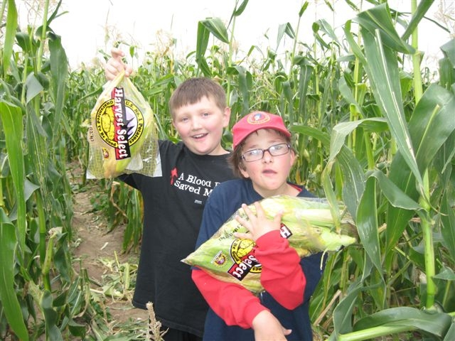 Miller Farms in Platteville provides an exciting day of picking vegetables and lunch for the Shining Stars families!