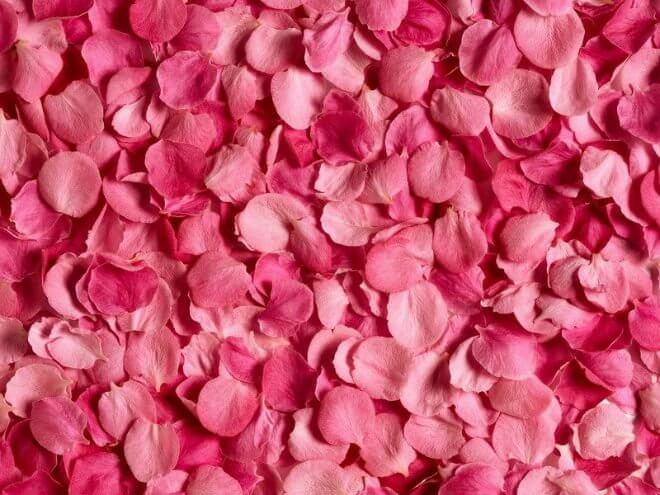 rose-oil.jpg