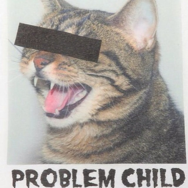 Current mood @jennybahn @sarahholmholmes #meow #trouble (at Tribecca Film Festival)