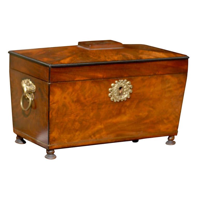 Empire Box in Mahogany