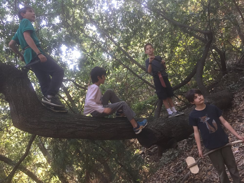 forest boys 2017.JPG