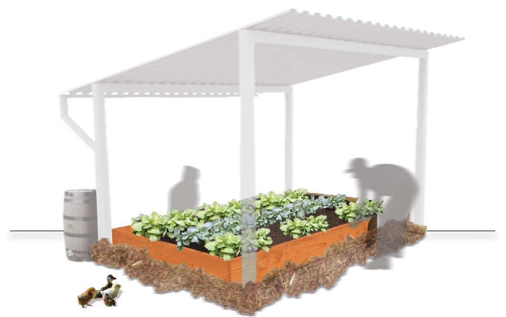 single planter shade structure.jpg