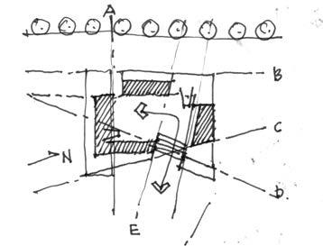 GrowLocal_Sketch5.jpg