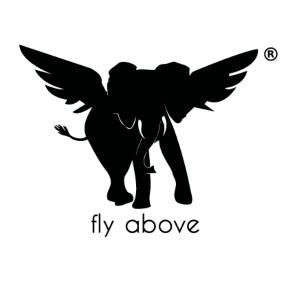 fly above logo