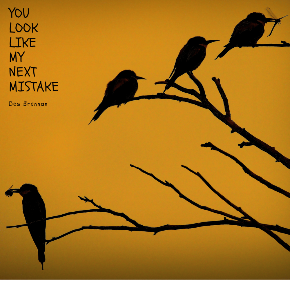 Des Brennan - You Look Like My Next Mistake EP.png