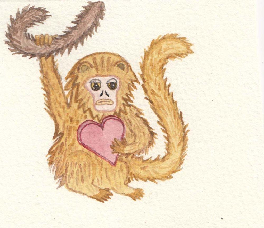 monkey yellow.jpg