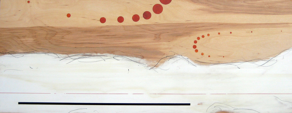 "Landscape    15.5"" x 48""  Acrylic, graphite, varnish, on wood  Price upon request"
