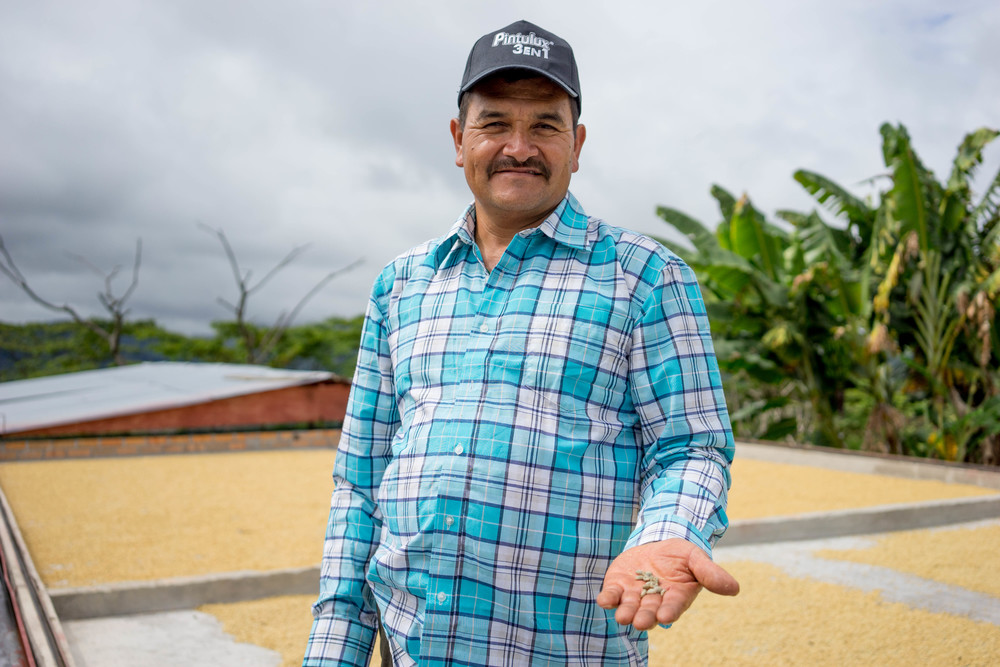Alfredo Baos in Palestina, Huila, proudly showing us his coffee