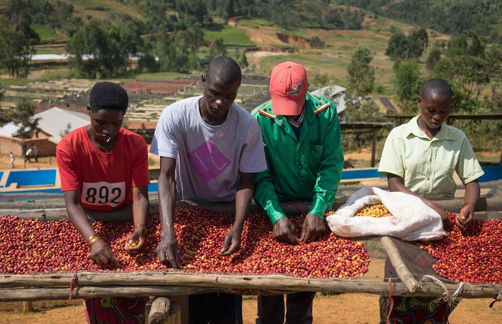 Cherry reception at Buziraguhindwa
