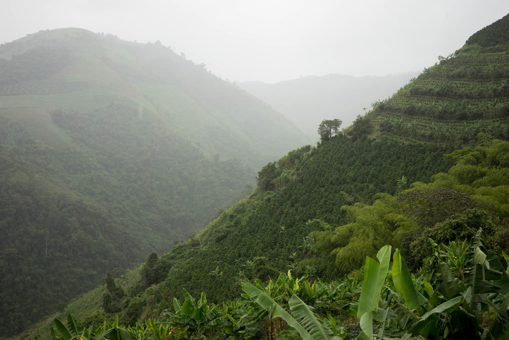 Heavy clouds and lots of rain for several weeks made some severe challenges for the farmers.