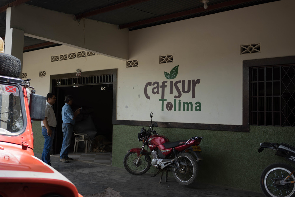 Cafisur purchase point in Ataco, Tolima