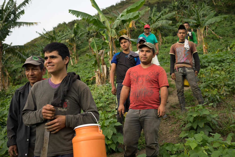 The pickers return from a long day in the fields, at Finca Buena Vista.
