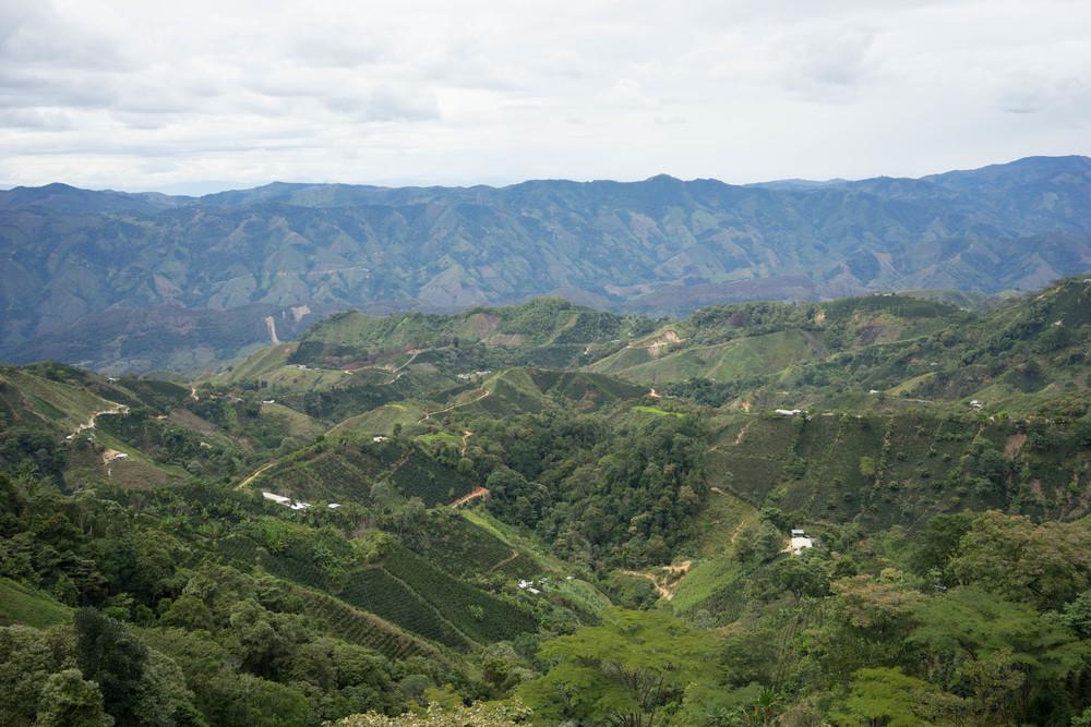 The view from Hernando Gomez' farm.