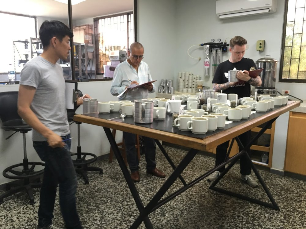 Cupping at Cafisur in Tolima