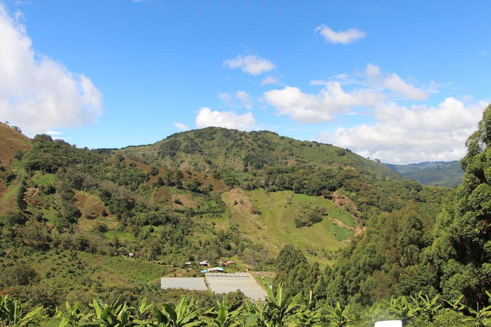Landscape from Copey de Dota