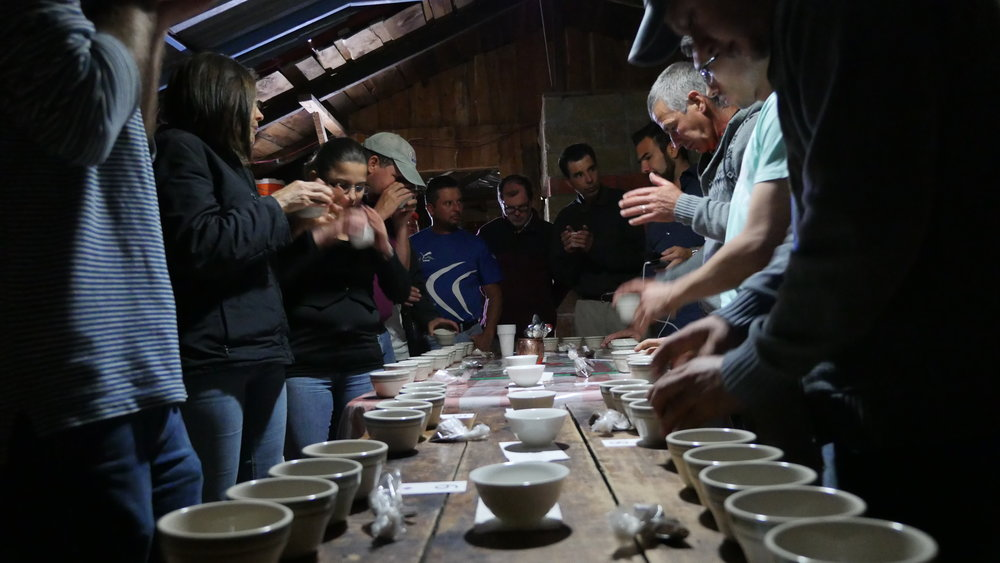 Producers cup their own coffees in Tarrazu, Costa Rica, 2016