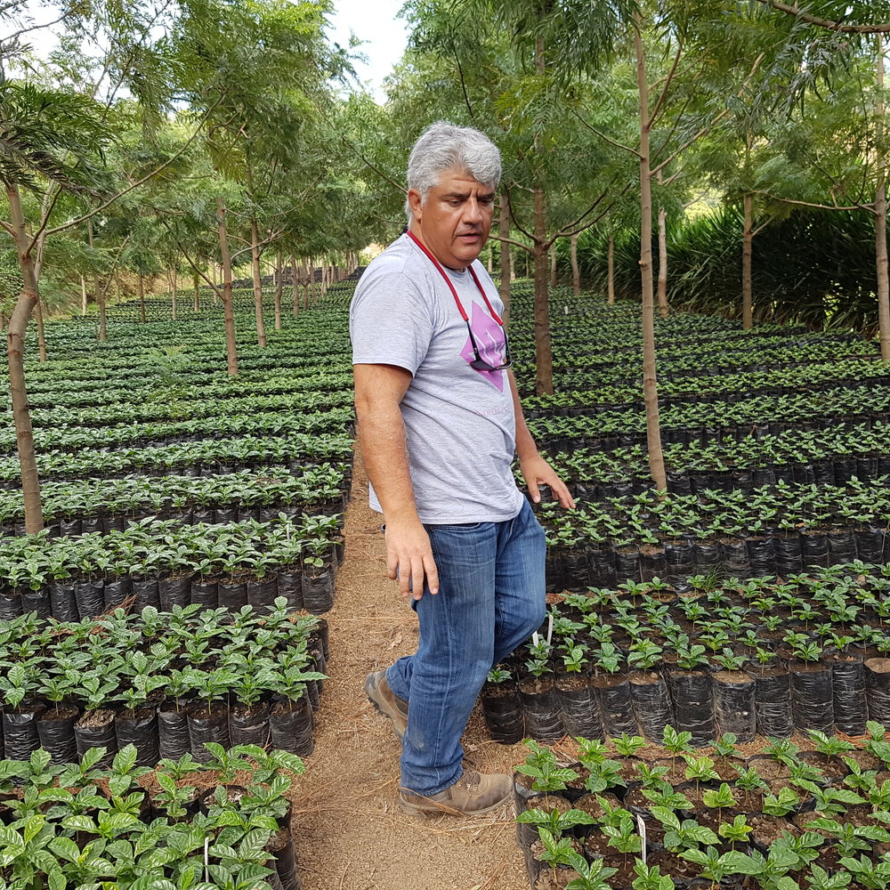 Gilberto in his nursery. A lot of cultivars for his seed bank.