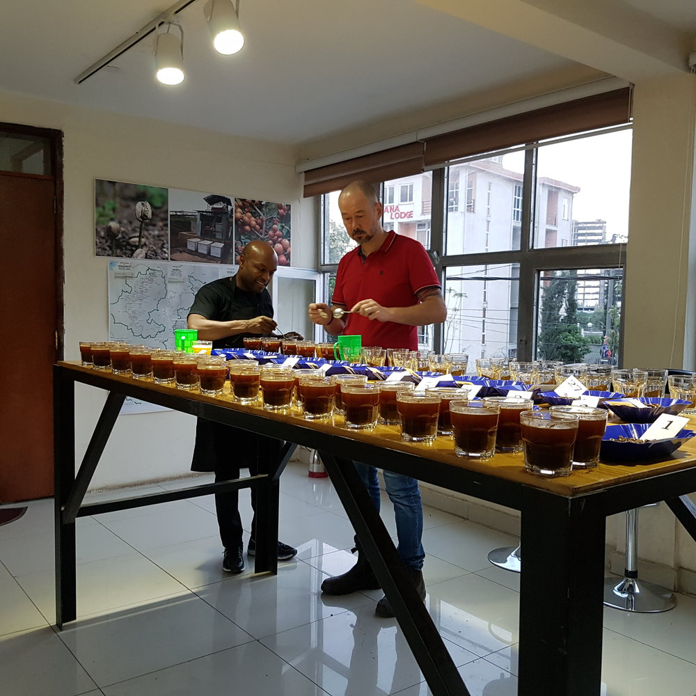 Morten and Seife cupping naturals in our Addis office