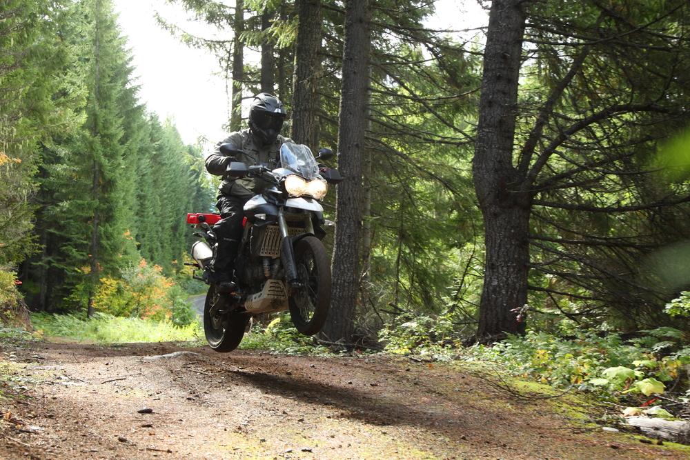 2012_Ken_R12_F800_Super Tenere_Multi_Vstrom_Tiger800_Forest (278).JPG