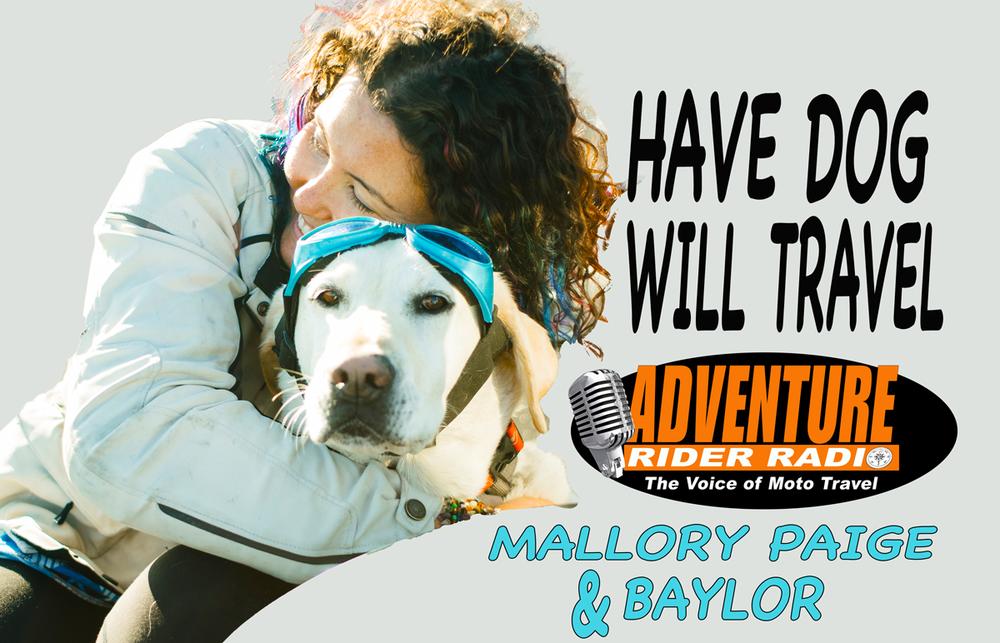 Mallory-Paige-Moto-Dog