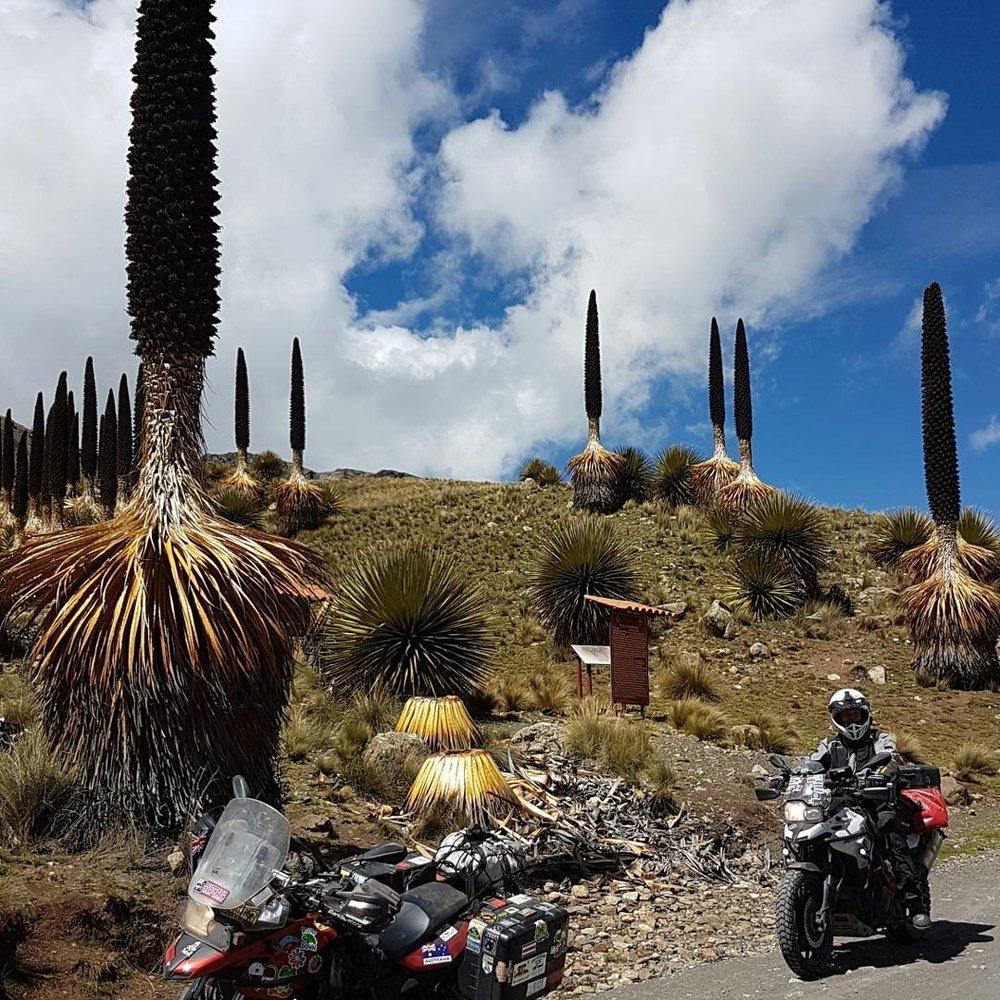 Maryna-Matthew-Paul-Knibbs-Adventure-Rider-Radio-motorcycle-podcast7.jpg