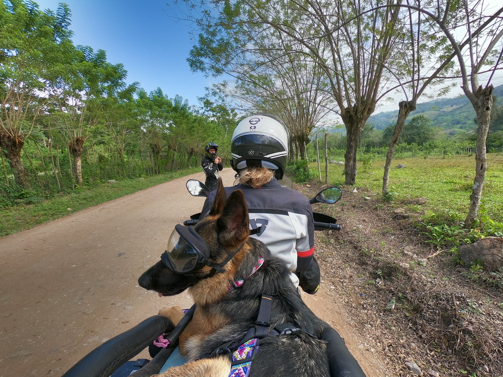 Jess-Greg-Stone-Ruff-on-the-Road-dog-adventure-rider-radio-motorcycle-podcast-1.jpeg
