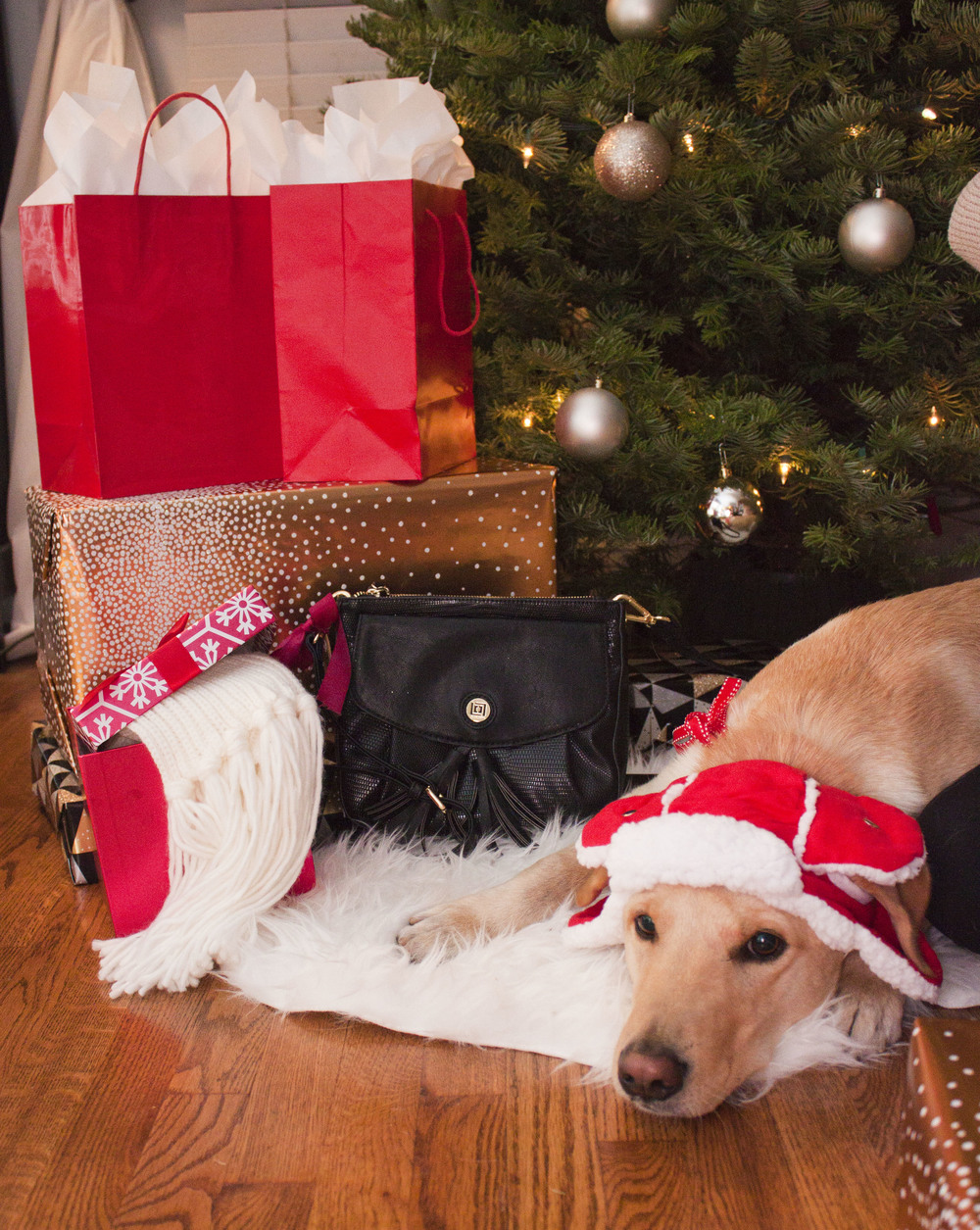 The perfect gift for under the tree: The Liz Claiborne Chelsea crossbody bag