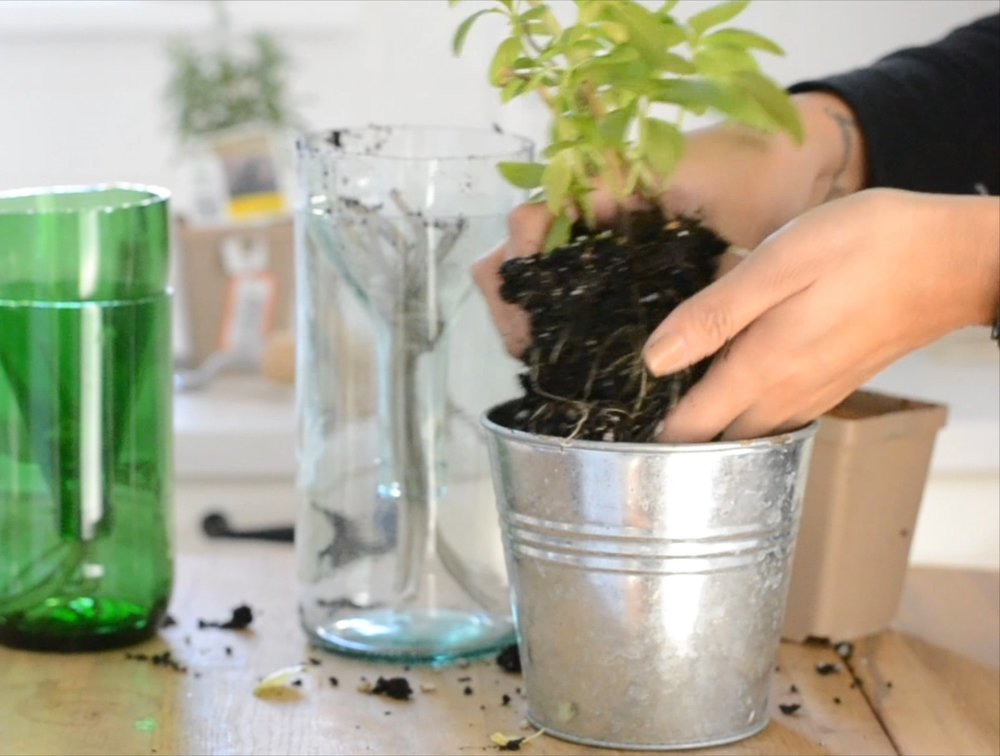 Upcycling Glass Bottles.mp4.Still026.jpg