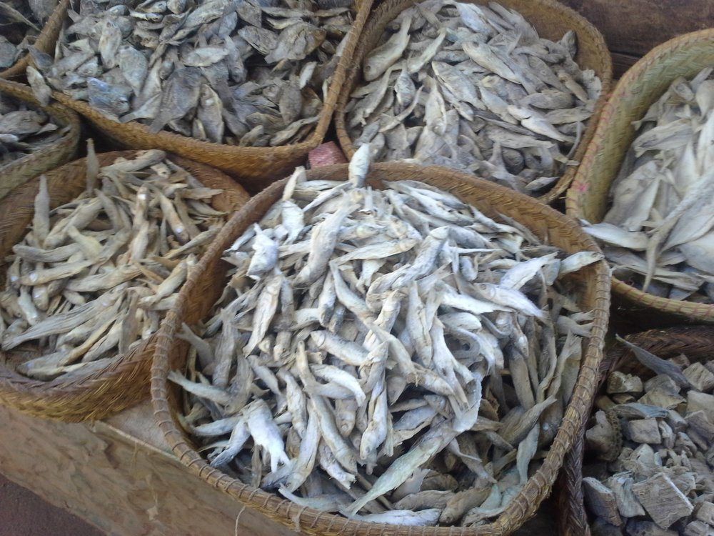 Dried fish--an important source of protein