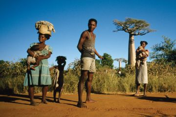 Social science research in Madagascar--It's a jungle -