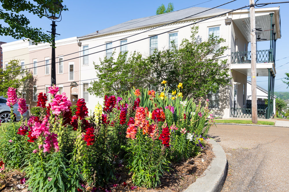 Exterior shot with flowers.jpg