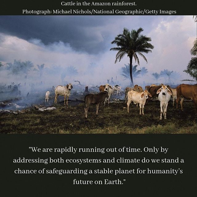 """We are rapidly running out of time,"" said Prof. Rockström, a sustainability expert at the Potsdam Institute in Germany. ""Only by addressing both ecosystems and climate do we stand a chance of safeguarding a stable planet for humanity's future on Earth."" http://ow.ly/ezQX30mrGmi"