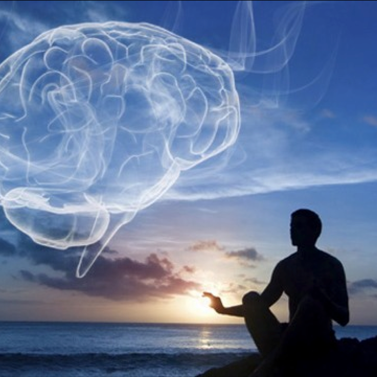 brain_meditator.png