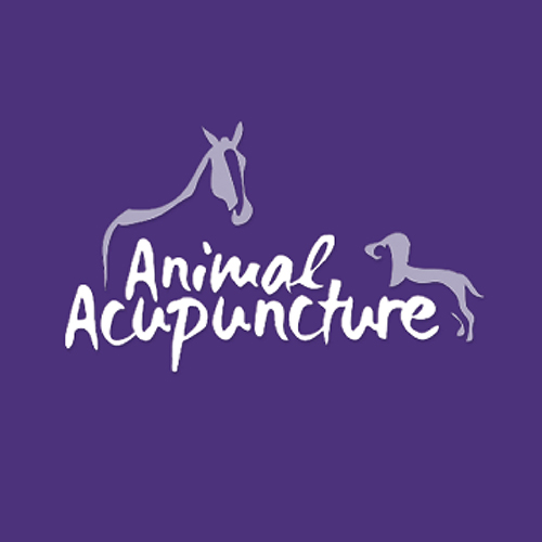 company website Animal Acupuncture