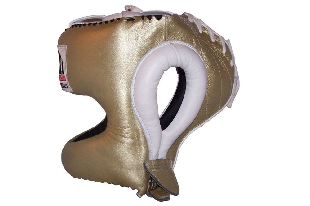 gold head gear side.jpg