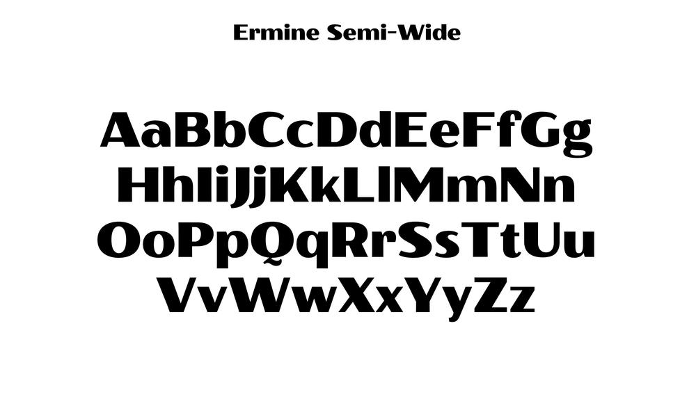 Badson_ErmineSemiWide_Slides4.jpg