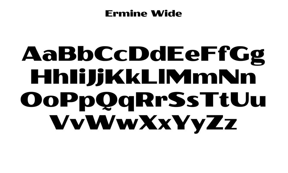 Badson_ErmineWide_Slides4.jpg
