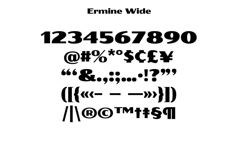Badson_ErmineWide_Slides7.jpg