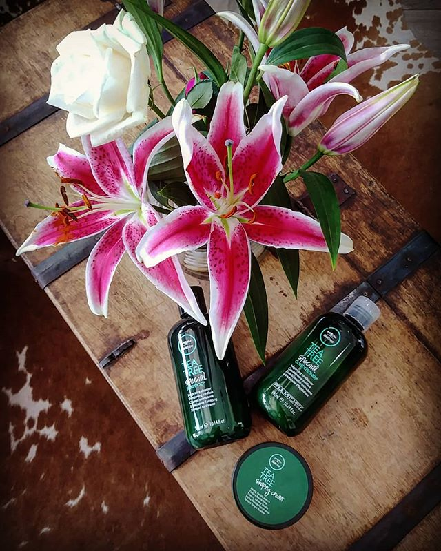 Celebrate spring and Earth Day with tea tree products!! Invigorates your scalp, leaves your strands refreshingly clean and full of shine. @paulmitchellus @teatreehaircare  #rootedingreen #teatreeoil #lakeworth #sfhairstylist #earthday