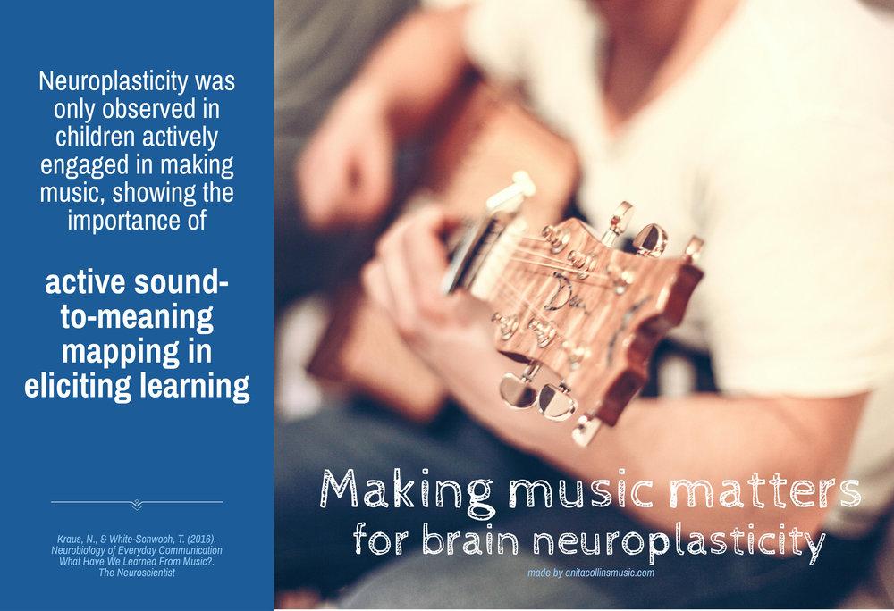 Research Memes_Kraus neuroplasticity.jpg