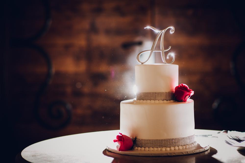 Shiela + Lester's Wedding 9-30-15 310.jpg