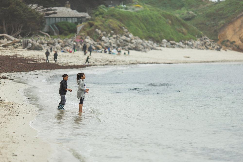 MOSS BEACH 063.jpg