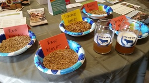 Examples of raw and malted grains were on display. Also, wheat and pale ale beers utilizing Blue Ox malts and brewed by Blank Canvas Brewery of Brewer, ME were offered as samples.